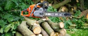 Custom Tree Felling in Buccleuch