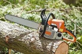 Business Tree Felling  Johannesburg